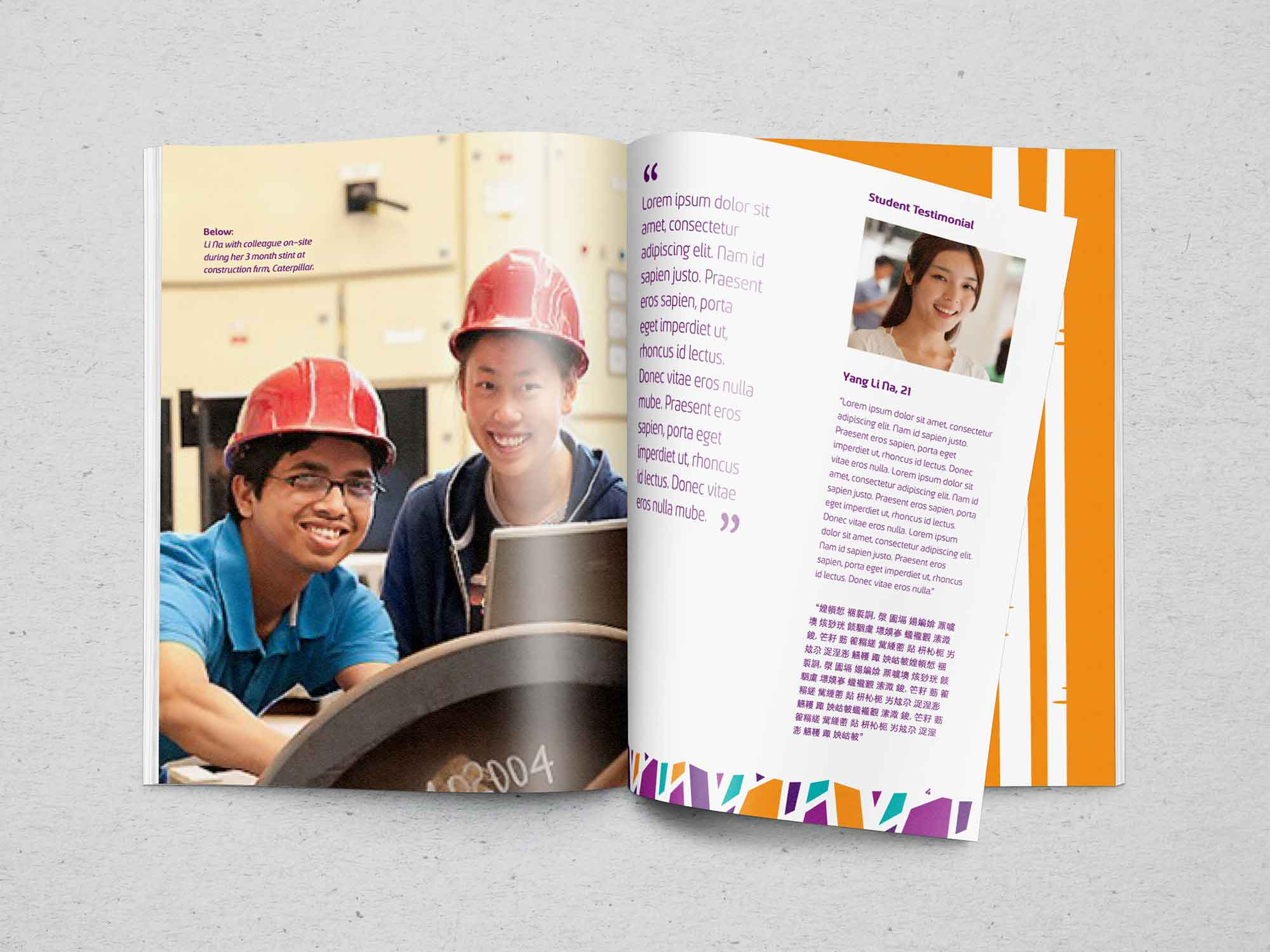 Brand Consultancy in Education Industry. Brochure for Barclyne.