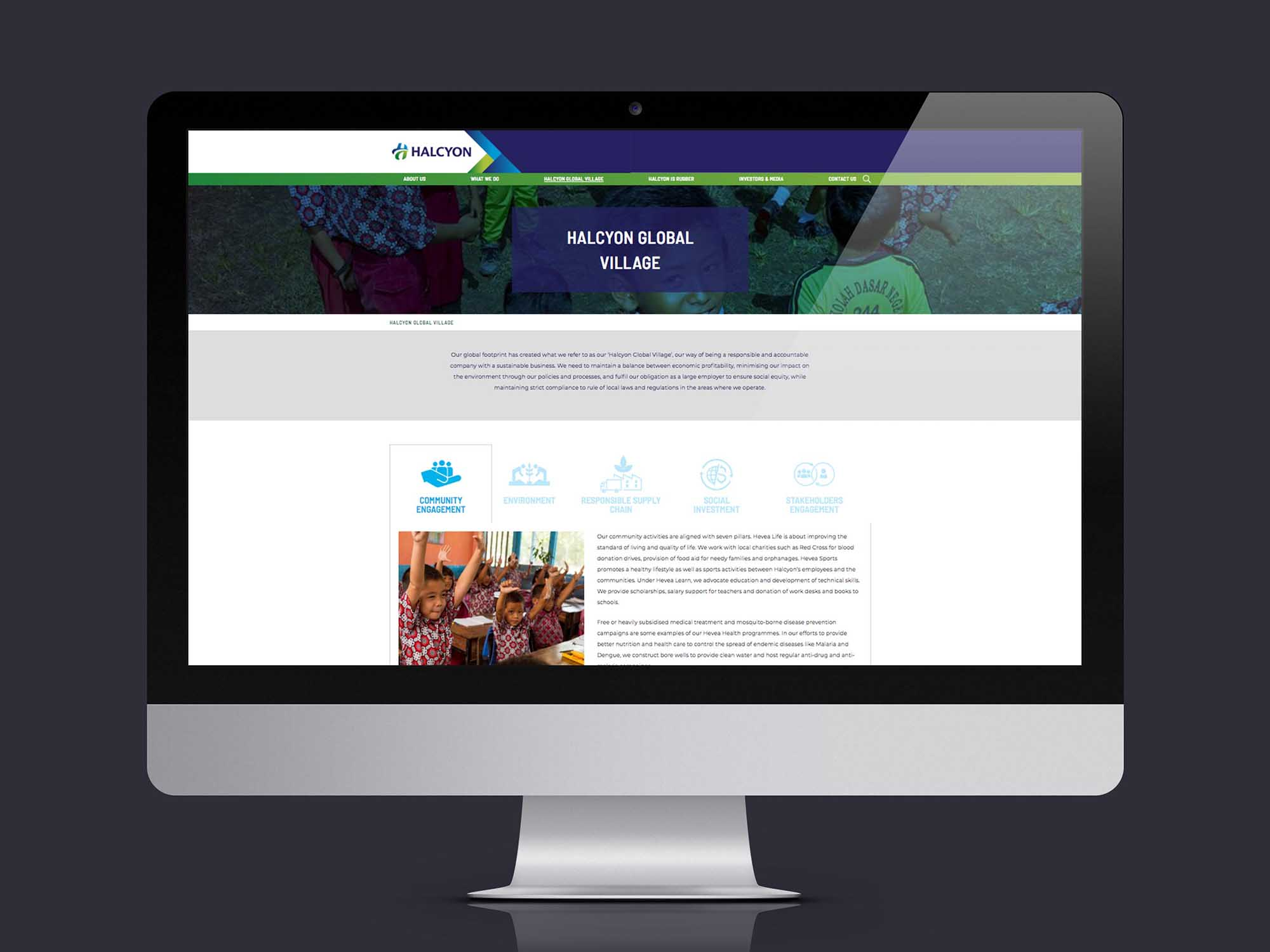 Brand Consultancy in Agriculture Industry. Website Design for Halcyon Agri